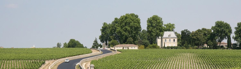 Bordeaux wijnvelden autoroute