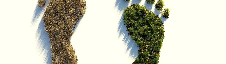 CO2 uitstoot - ecologische voetafdruk