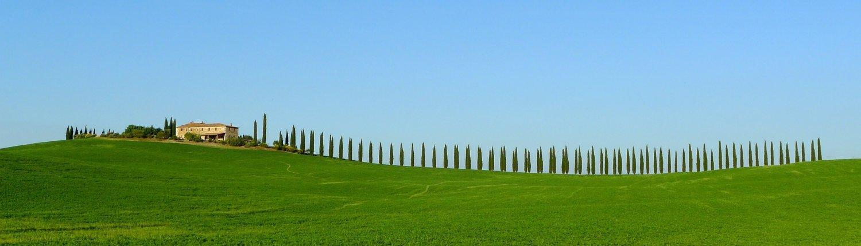 Italië Toscane Cipresen landschap