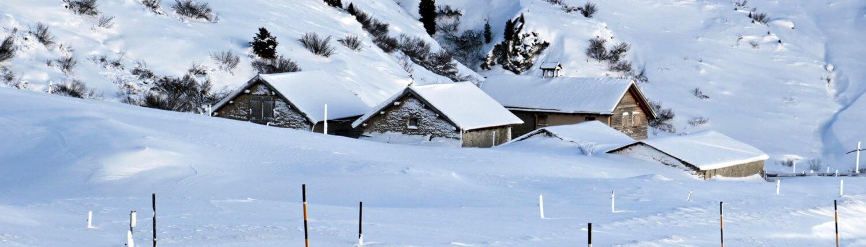 Zwitserland ski piste besneeuwd