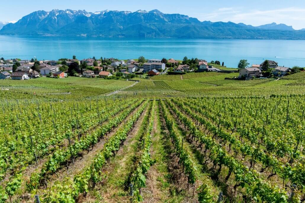 Lausanne en omgeving, ook wel bekend als de Zwitserse Rivièra