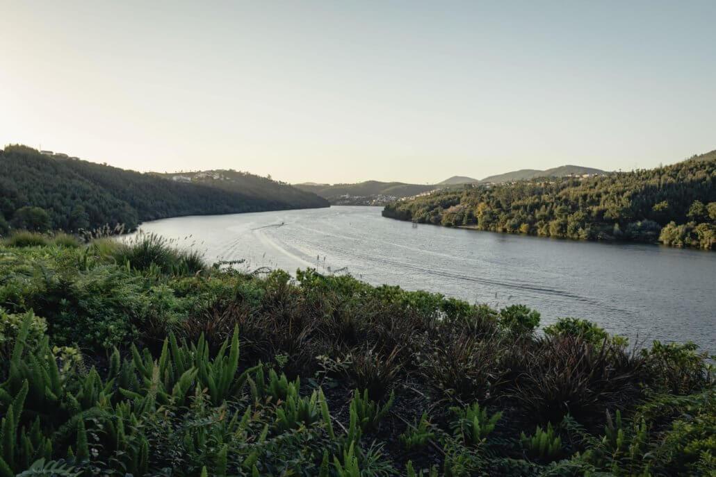 De mooie natuur langs de Douro vallei - UNESCO werelderfgoed